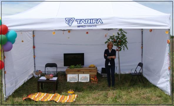 z_tarifa